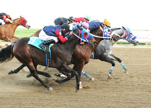 Colorado unsanctioned horse racing