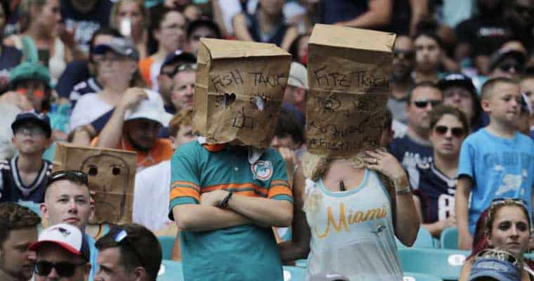 dolphin-fans