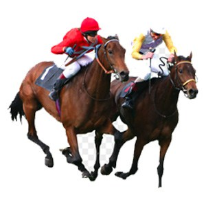 two horses racing icon