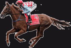 Horse Running Icon