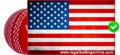 USA Cricket icon