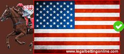 USA Horse Betting Icon