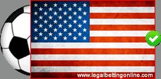 USA Friendly Soccer Flag